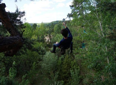 Tree climbing - Indy Aventure course
