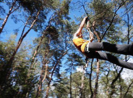 Tree climbing - Indy Kid course